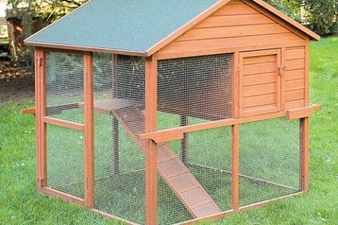 Une maison r nover laura vous donne des conseils de r novation - Installer un poulailler dans son jardin ...
